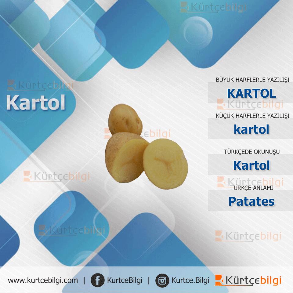 Patates Kürtçe Resmi